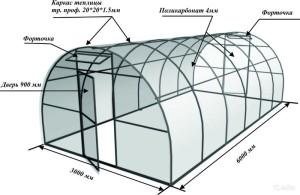 chertezh-teplicy-iz-polikarbonata